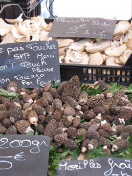 morellesright Cooking in Nice:  Les Petits Farcis, Part One  The Market Tour